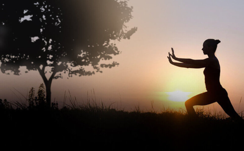 silhouette of person exercising on grassy plain next to tree