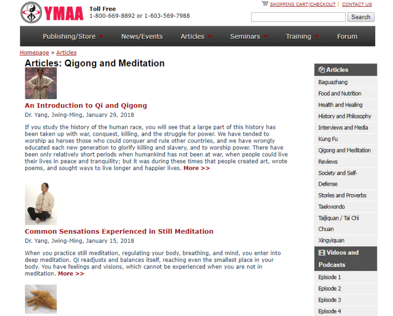 Yang's Martial Arts Association website front page