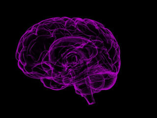 brain and sleep featured image